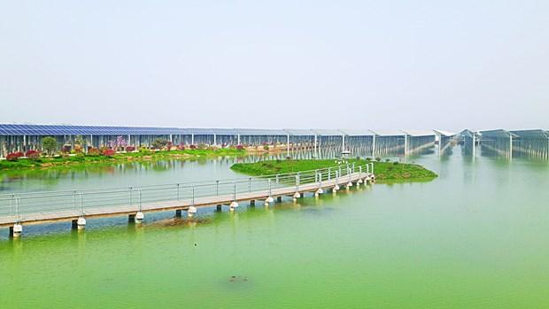 西宁省努力加快各太阳能发电厂项目施工进度 hinh anh 1