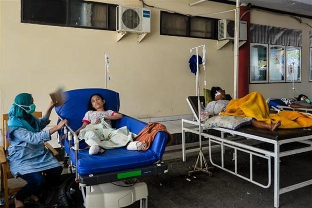 印尼地震和海啸:印尼政府为地震灾民设立临时避难所 hinh anh 1