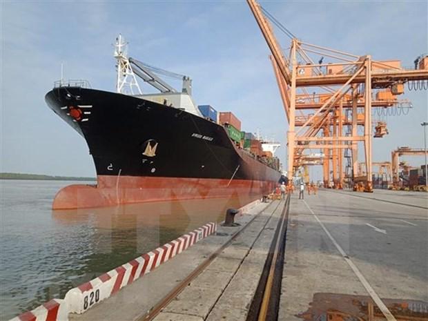 越南航海总公司出资7万亿越盾在海防市莱县港新建两个集装箱码头 hinh anh 1