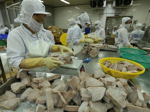 2018年越南水产品出口额有望达到90亿美元 hinh anh 1