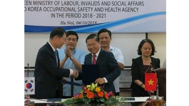 越南与韩国加强职业安全与卫生领域的合作 hinh anh 1