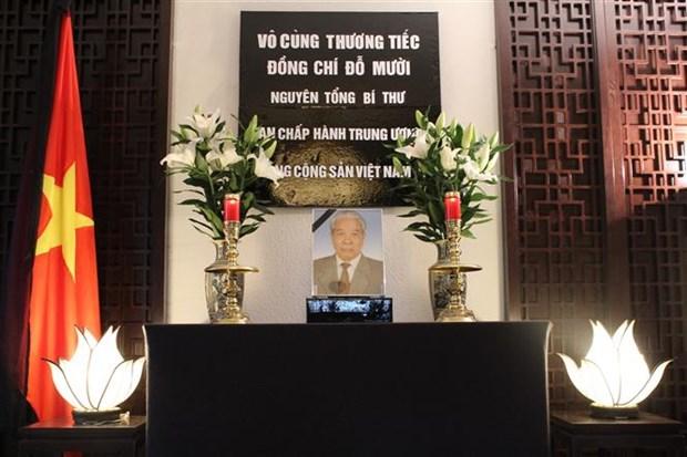 越南驻各国大使馆举行原越共中央总书记杜梅吊唁仪式 hinh anh 2