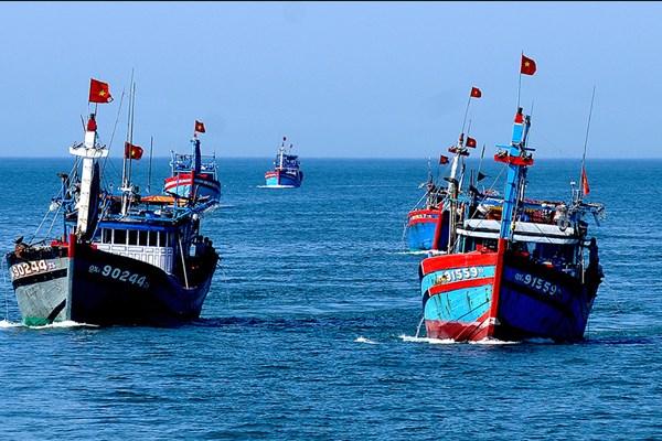"""为渔业解除欧盟""""黄牌""""警告做出努力 hinh anh 1"""