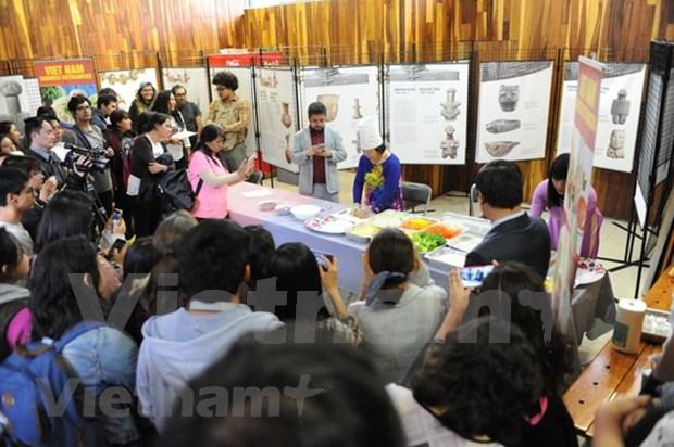 越南民族文化宣传活动在墨西哥举行 hinh anh 1