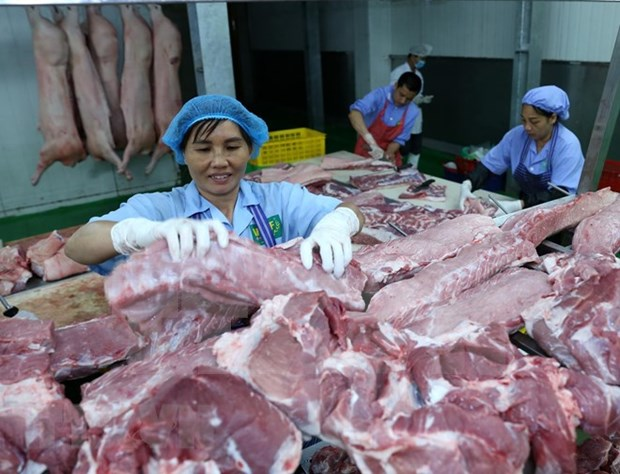 美国猪肉寻找对越南出口的出路 hinh anh 1