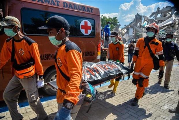 印尼地震和海啸:死亡人数近2000人 灾区搜救工作于10月11日结束 hinh anh 1