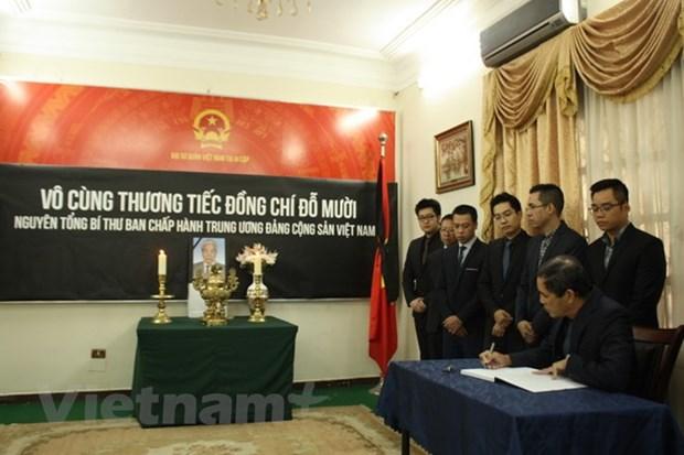 原越共中央总书记杜梅吊唁仪式在埃及、阿根廷和孟加拉国举行 hinh anh 1