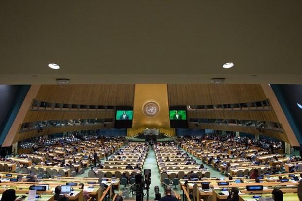 联合国促进可持续发展目标实施进程 hinh anh 1
