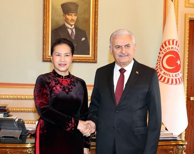 越南国会主席阮氏金银与土耳其议会议长比纳利·耶尔德勒姆举行会谈 hinh anh 1