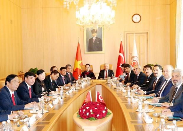 越南国会主席阮氏金银与土耳其议会议长比纳利·耶尔德勒姆举行会谈 hinh anh 2