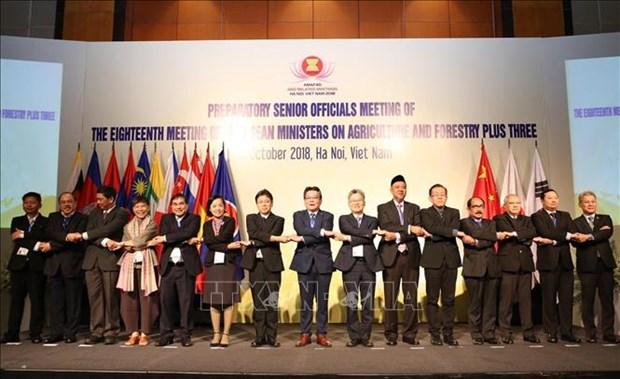 东盟与中日韩促进农林水产业的贸易活动 hinh anh 1
