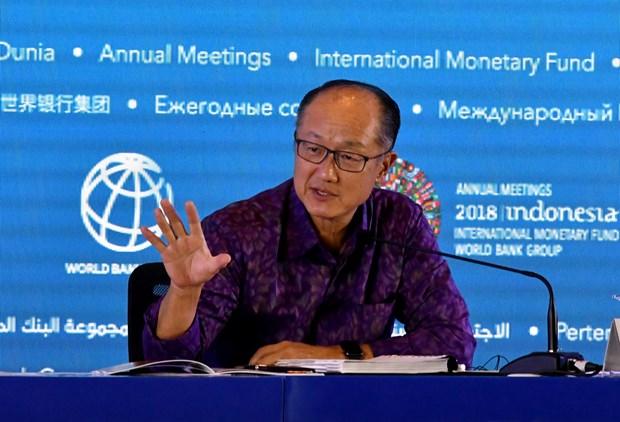 2018年国际货币基金组织和世界银行年会在印尼举行 hinh anh 1