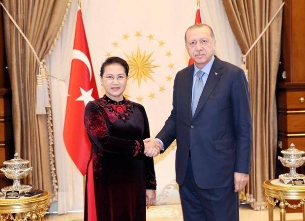越南国会主席阮氏金银会见土耳其总统埃尔多安 hinh anh 1