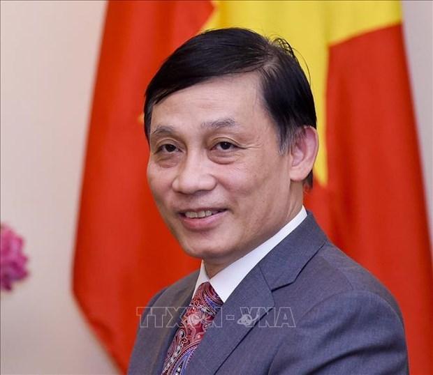 越南外交部副部长黎怀忠:日本愿与越南的可持续发展而进行合作 hinh anh 1