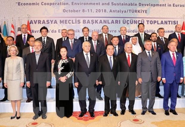 越南为多边体制制定做出贡献 积极与土耳其加强友好关系 hinh anh 2