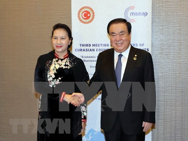 越南为多边体制制定做出贡献 积极与土耳其加强友好关系 hinh anh 3