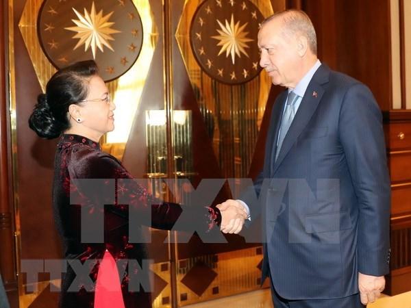 越南为多边体制制定做出贡献 积极与土耳其加强友好关系 hinh anh 4