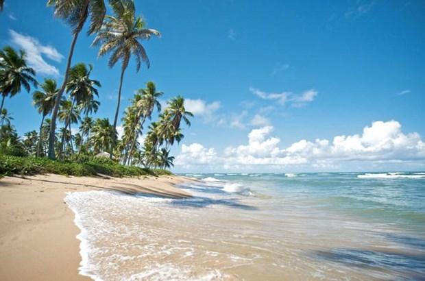 美丽的富国岛海星滩 hinh anh 1