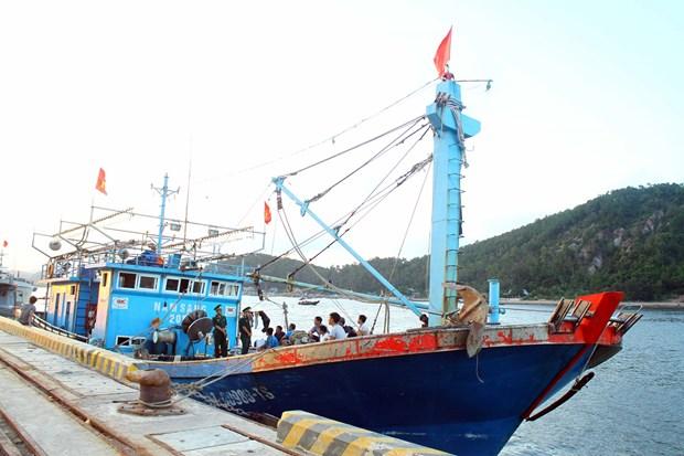 乂安省边防部队指挥部成功救援一艘海上遇险渔船 hinh anh 1
