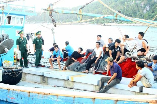 乂安省边防部队指挥部成功救援一艘海上遇险渔船 hinh anh 2