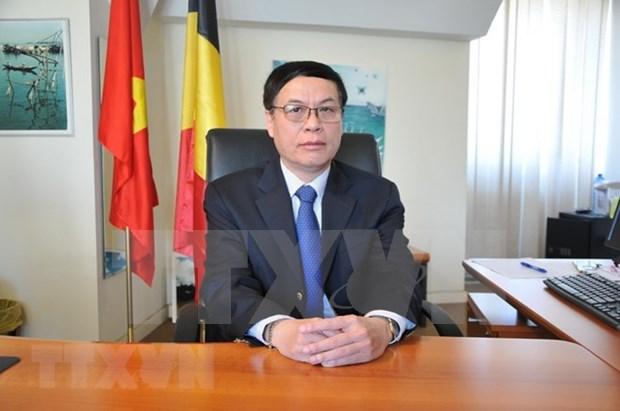 着力促进越南与欧洲全面合作关系 hinh anh 1