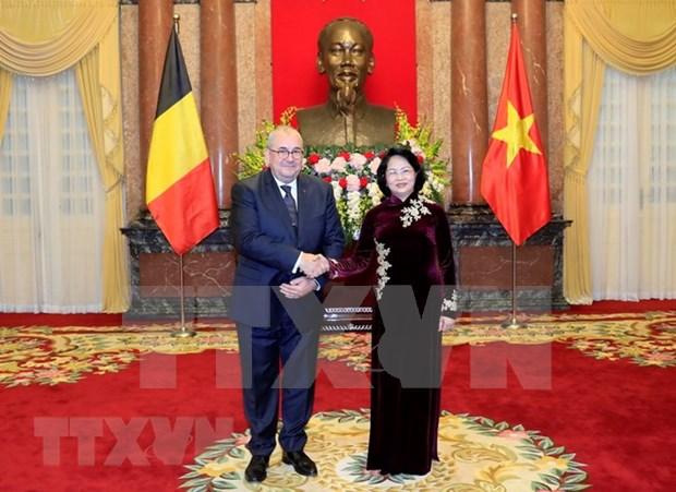 越南国家代主席邓氏玉盛接受三国新任驻越大使递交国书 hinh anh 2