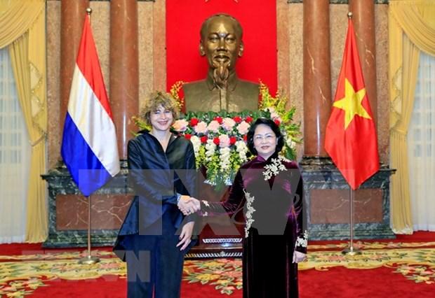 越南国家代主席邓氏玉盛接受三国新任驻越大使递交国书 hinh anh 1