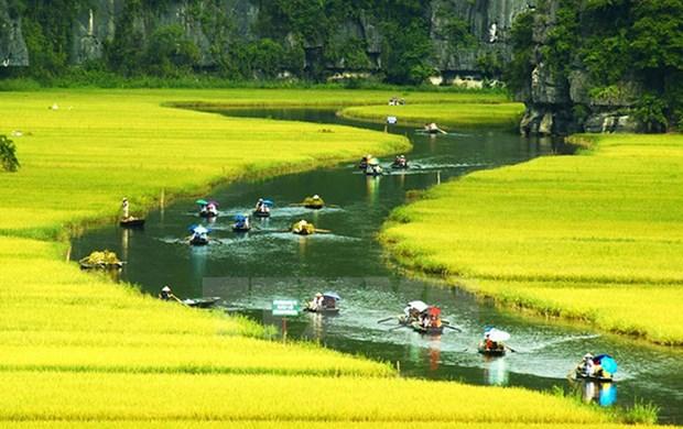越南旅游业将迎来第150万名国际游客 hinh anh 1