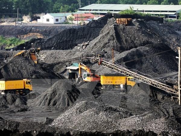 今年前9月越南煤炭与矿产工业集团煤炭销量达3100万吨 hinh anh 1