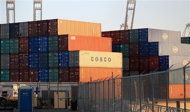 中美贸易战:越南大米出口企业不可忽视的风险 hinh anh 1