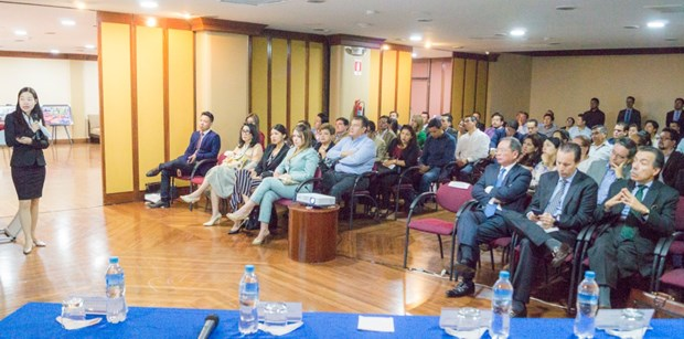 加强越南与厄瓜多尔贸易和投资合作 hinh anh 3
