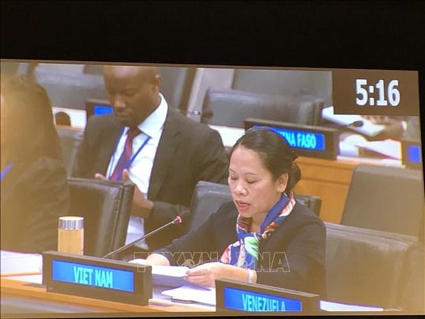 越南在联合国大会分享消除贫困经验 hinh anh 1