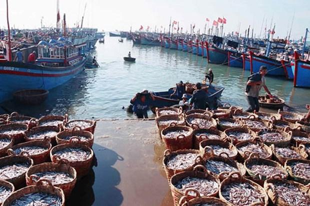 承天顺化省努力发挥水产品养殖和海产品捕捞的优势 hinh anh 1