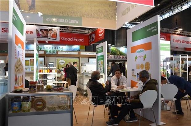 越南食品企业努力征服欧洲市场 hinh anh 1