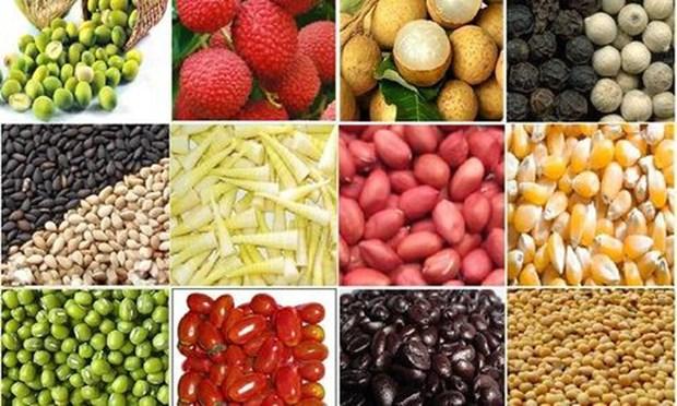越南农产品需要严格按照国际标准生产 hinh anh 1
