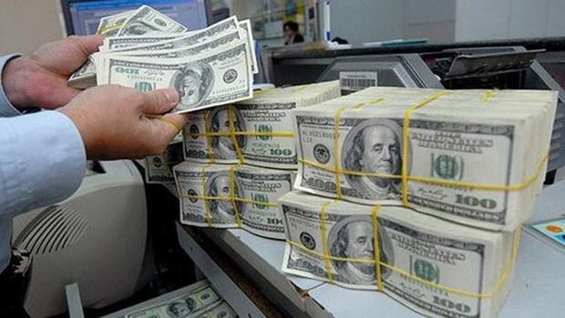 强化外债使用和管理的法律政策执行力度 hinh anh 1