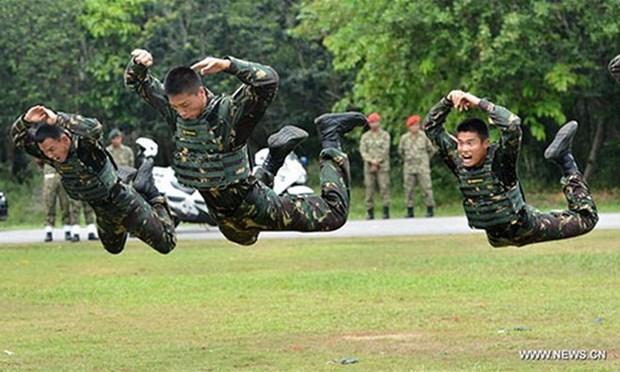 中国、马来西亚、泰国首次举行联合军事演习 hinh anh 1