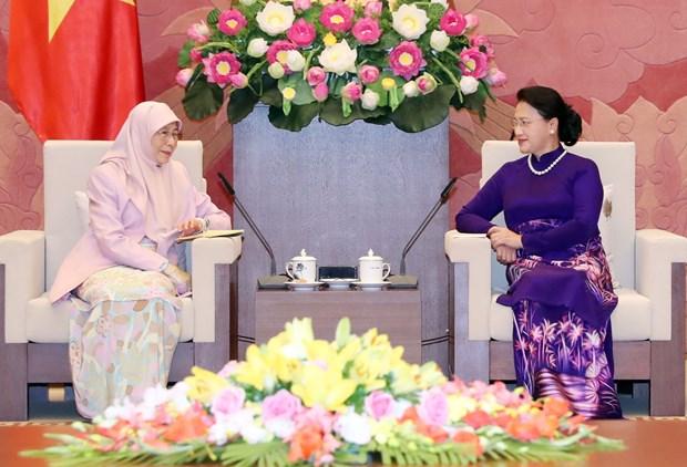 越南国会主席阮氏金银会见马来西亚副总理 hinh anh 1
