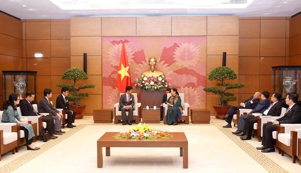 越南国会常务副主席丛氏放会见日本医疗专家团 hinh anh 1