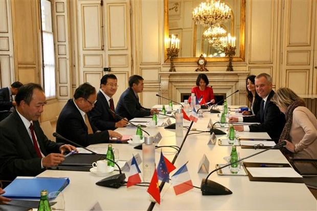 着力扩展越南与法国之间的全方位合作 hinh anh 1