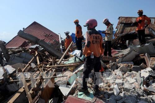 印尼地震和海啸:恢复重建工作将于11月初开始 hinh anh 1