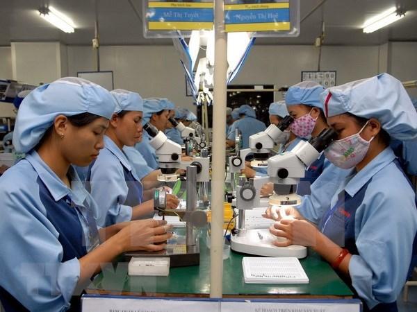 越南将继续开放出口市场 hinh anh 1