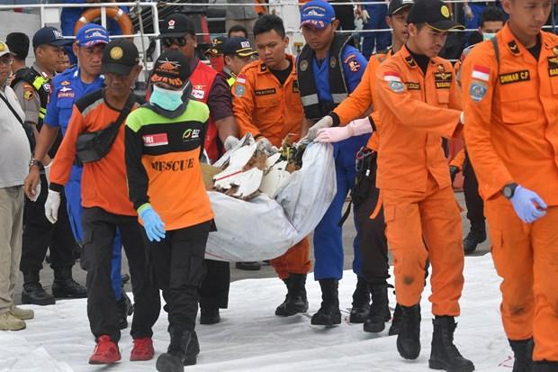越南领导人就印尼客机坠海事件致慰问电 hinh anh 1