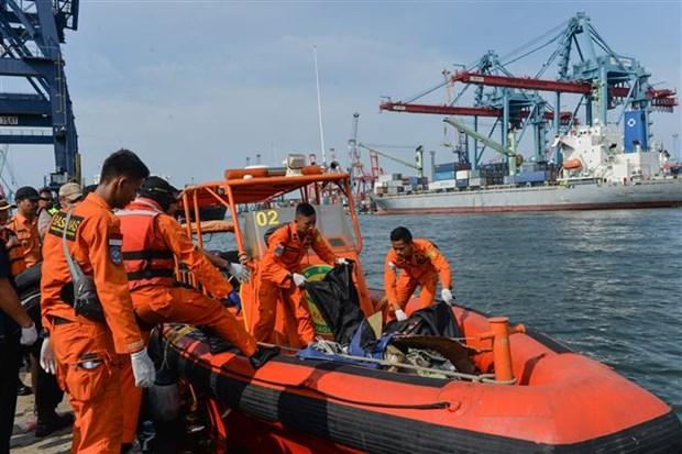 印尼客机坠海事件:佐科总统慰问遇难者家属 hinh anh 1