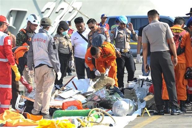 印尼客机坠海事件:搜救工作将持续七天 hinh anh 1