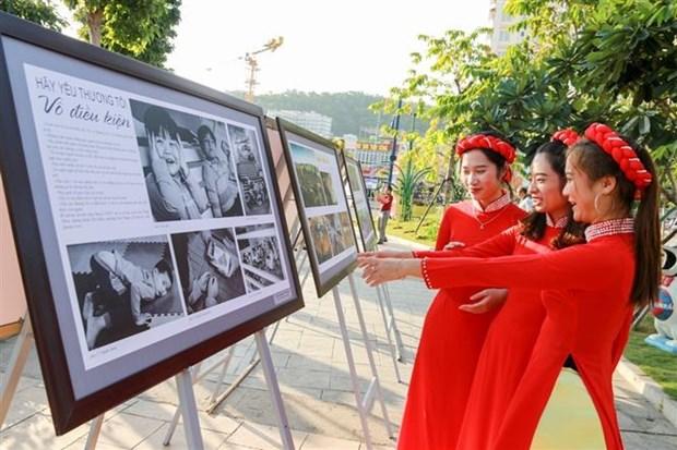 2018年越南艺术摄影展览会正式开幕 hinh anh 3