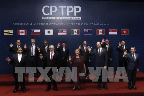 CPTPP将于2018年年底生效 hinh anh 1