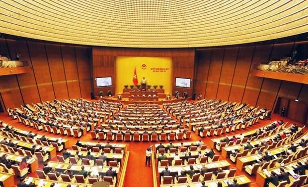 越南第十四届国会第六次会议:国会代表就热点问题对政府成员进行质询 hinh anh 1