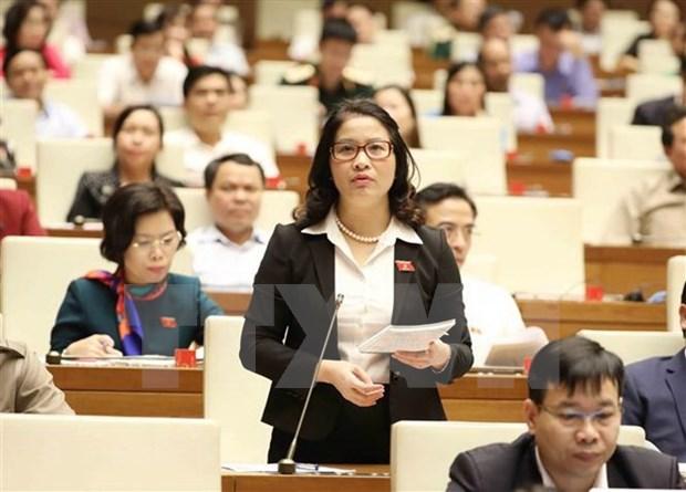 越南第十四届国会第六次会议:质询活动进入最后一天 hinh anh 1