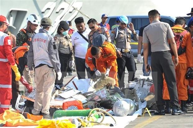 印尼客机坠海事件:飞机黑匣子仍保留完整状态 hinh anh 2